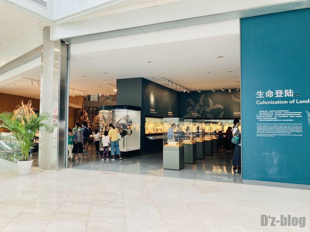 上海自然博物館生命登陸館内