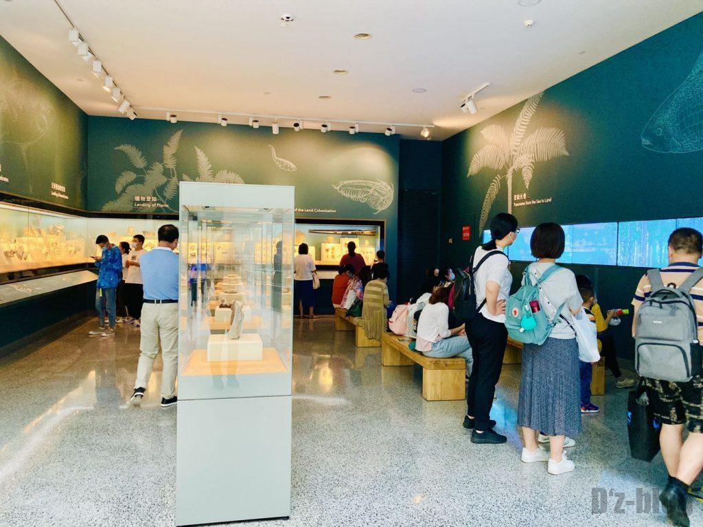 上海自然博物館登陸海内化石