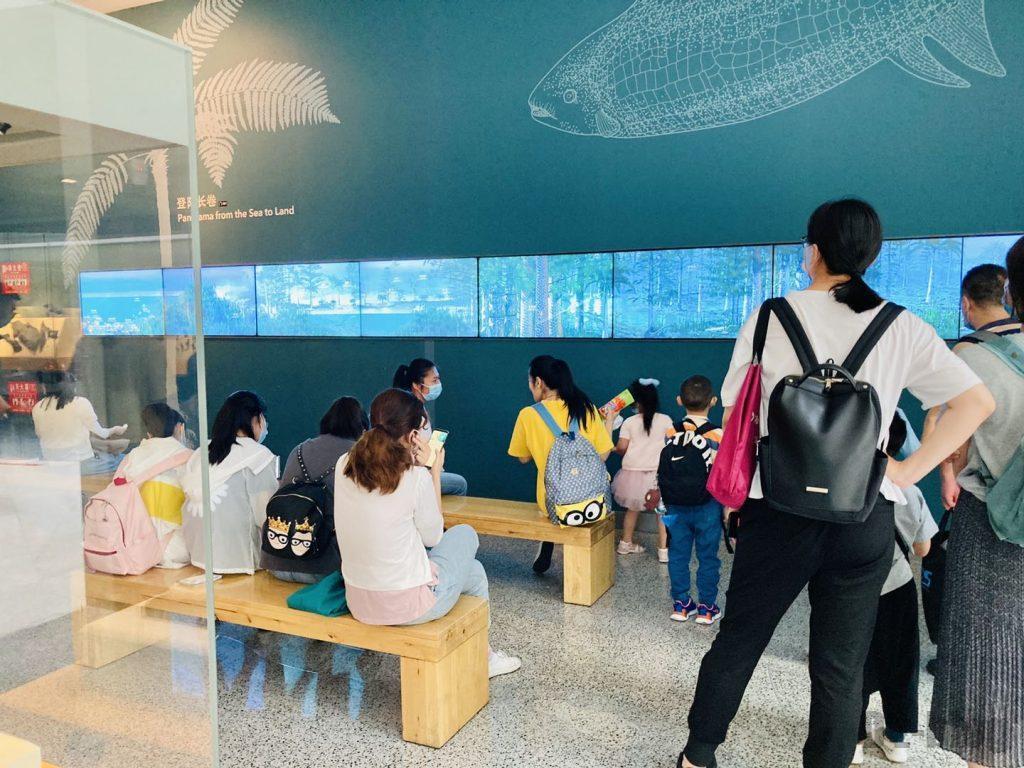 上海自然博物館登陸物語映像2