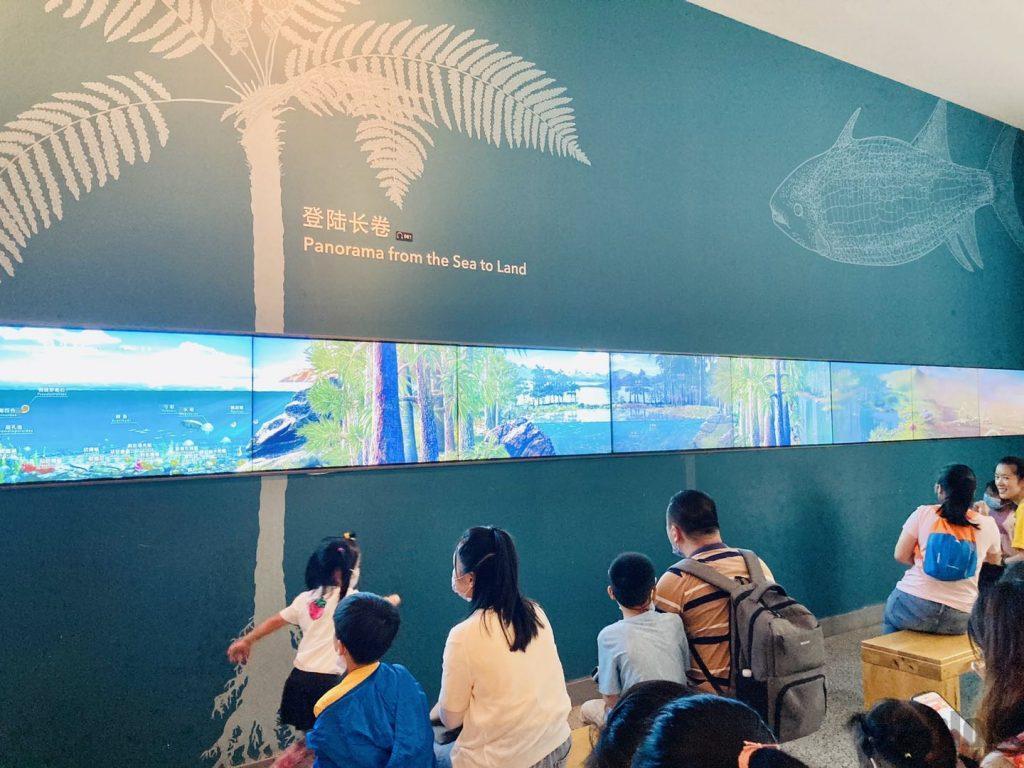 上海自然博物館登陸物語映像
