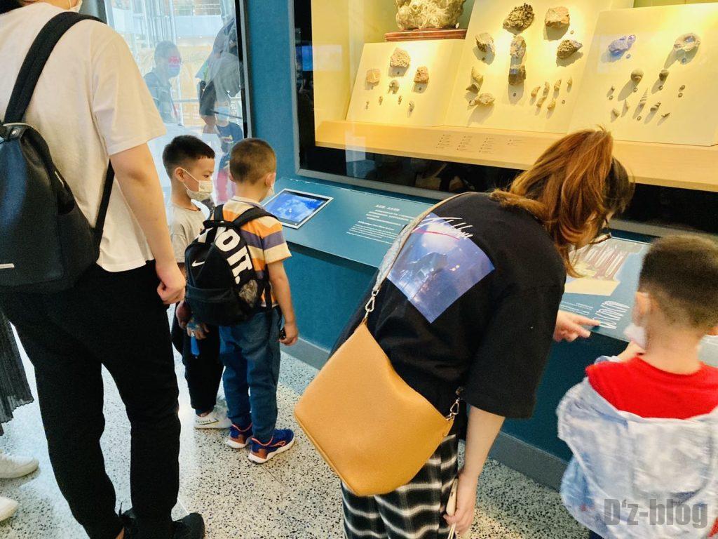 上海自然博物館海内生物化石子供観覧