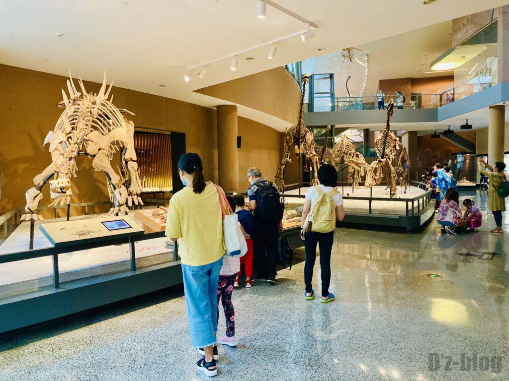上海自然博物館恐竜全身化石観覧客