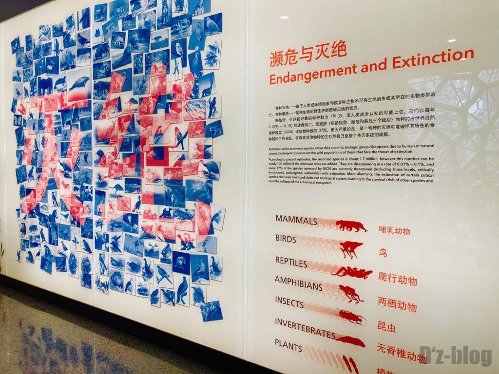 上海自然博物館絶滅危機種