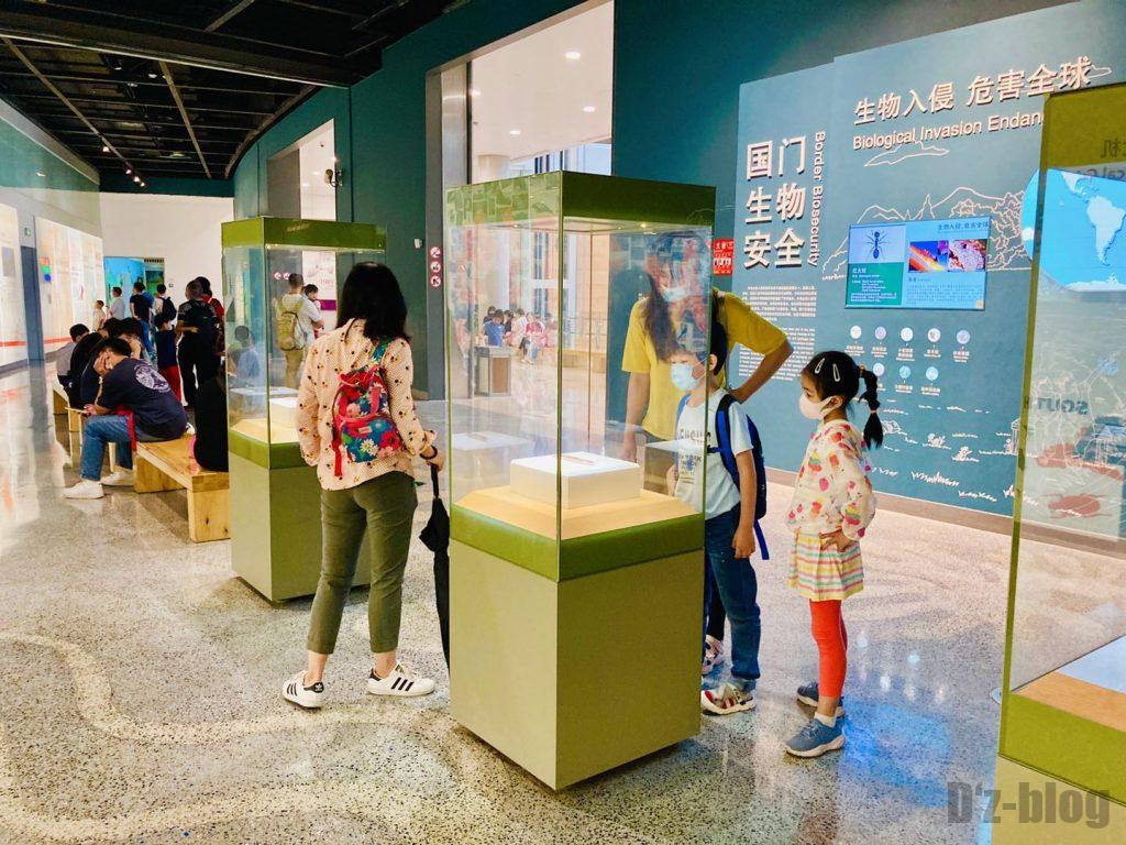 上海自然博物館未来の道展示物3