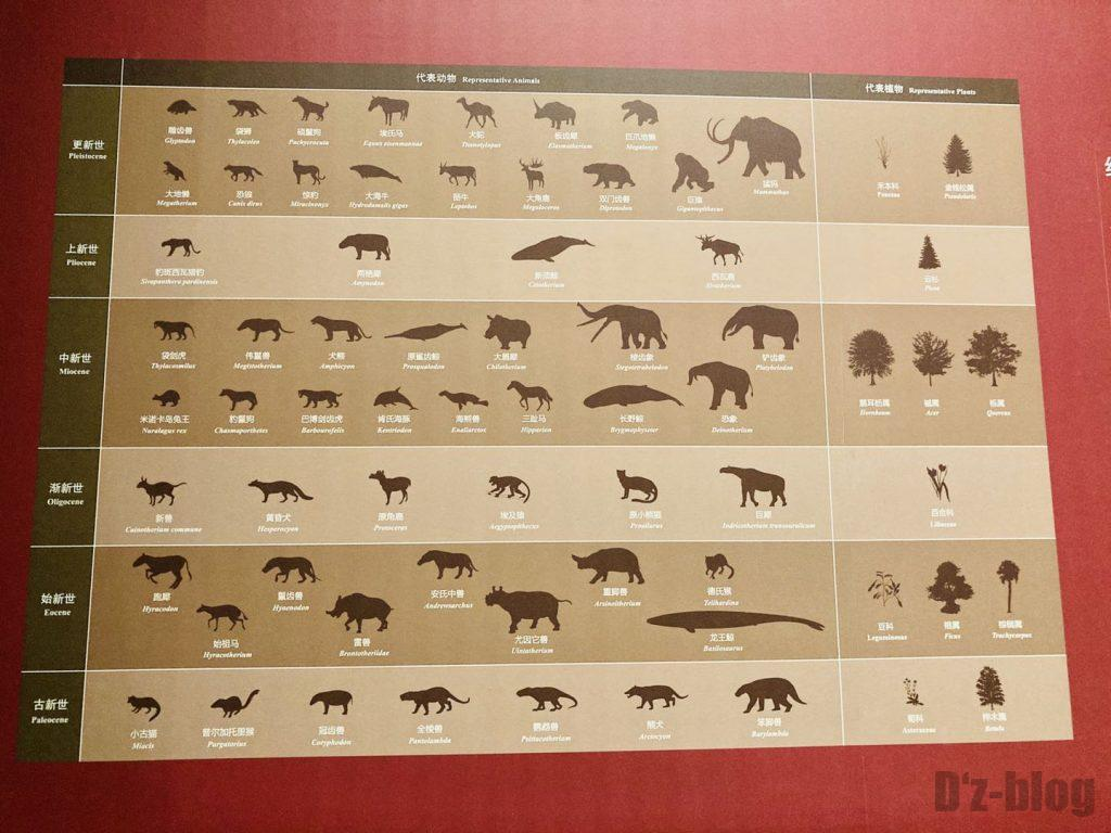 上海自然博物館生物の進化表