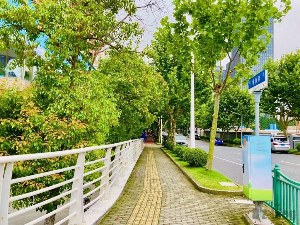 上海锦康路並木道2