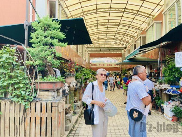 上海岚灵花鳥市場 風景