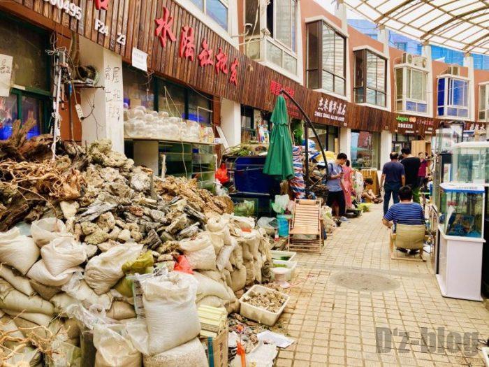 上海岚灵花鳥市場 雰囲気