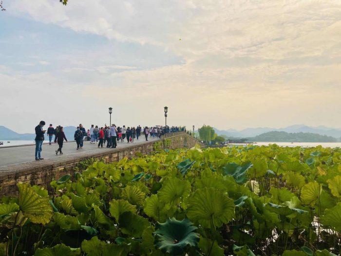杭州西湖橋②