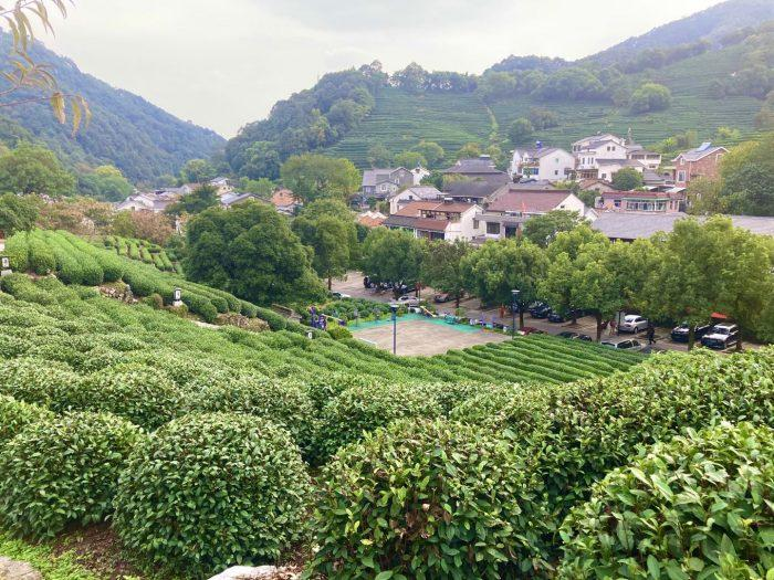 杭州龍井村上から見た村の景色③