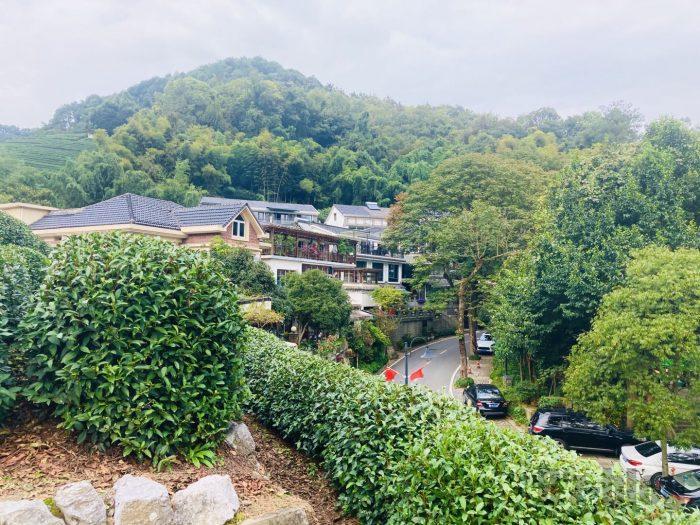 杭州龍井村上から見た村の景色