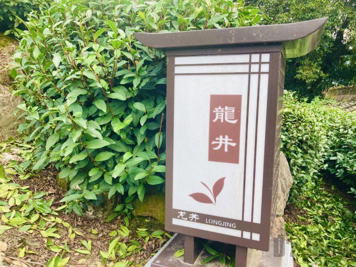 杭州龍井村上電気