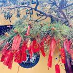 上海玉佛禅寺⑧