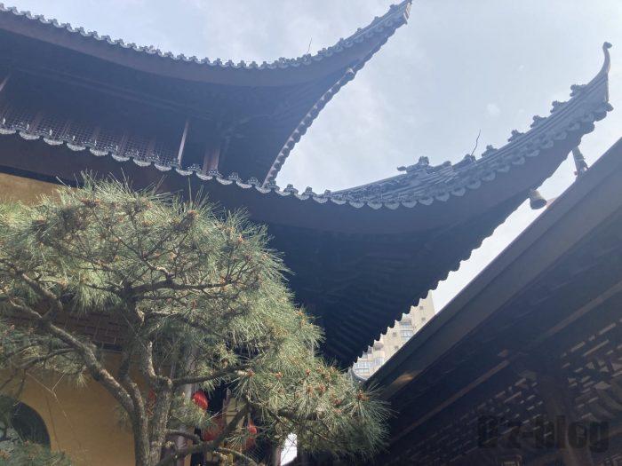 上海玉佛禅寺5